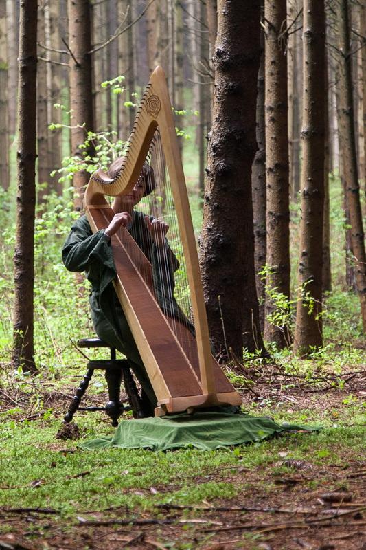 Harfe bei Zillhausener Märchenwanderung